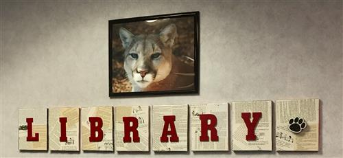 Library Mission Statment